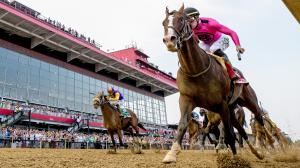 War of Will vindicated a troubled Derby trip with a win in the Preakness Stakes.