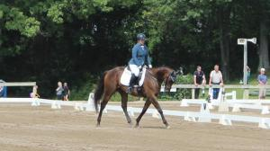 Thoroughbred Makeover Diary: Being Overprepared Never Hurts