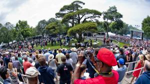 Horse Racing Terms to Know for the Belmont Stakes