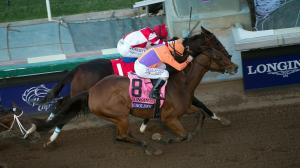 Twelve Things You Should Know about the 2018 Breeders' Cup Distaff