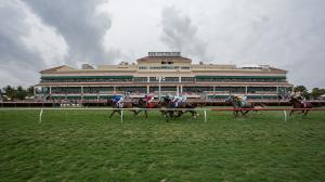 Best Bets: Stakes Longshots at Gulfstream, Fair Grounds