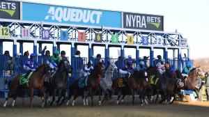 Best Bets: Aqueduct Stakes Standouts, Fair Grounds Longshot
