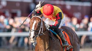 Five 2-Year-Olds to Watch From Saratoga's Meet