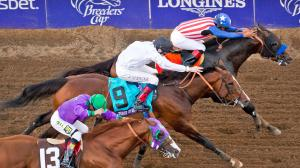 Twelve Things You Should Know About the 2020 Breeders' Cup Classic