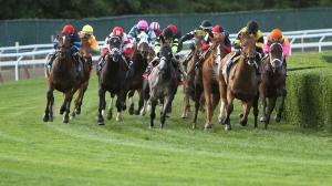 Dan's Double: Turf Sprints Plus a Belmont Stakes Bonus Play