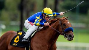 Selecting a Horse to Upset Charlatan in Arkansas Derby