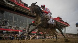 Making Sense of Cloud Computing's Preakness Stakes Victory