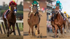 Tale of the Tape: Evaluating Impassioned Horse of the Year Debate