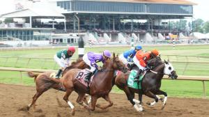 Three Longshots Who Could Upset Art Collector in the Ellis Park Derby