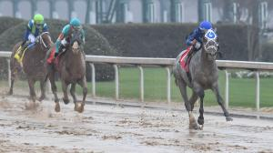 Which 2021 Kentucky Derby Runners Could Benefit from a Wet Track?