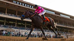Game Winner Gives Baffert 14th Del Mar Futurity