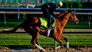 After Finding Trouble in Derby, Hofburg Can Make Amends in Belmont Stakes