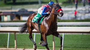 Derby Trail: Three Heating Up, Three Cooling Down for Feb. 15