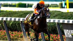 Breeders' Cup Under the Microscope: Analyzing the Sprint Contenders