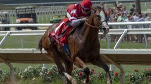 Five 2-Year-Olds to Follow from Del Mar