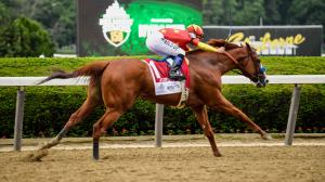 Twelve Things to Know About the 2020 Belmont Stakes