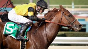 Three Longshots to Consider on Saturday's Belmont Stakes Card