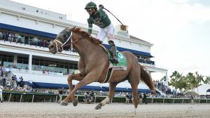 Much to Like About Improving Kentucky Derby Hopeful Known Agenda
