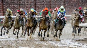 Preakness Update: Eleven Possible Contenders for Baltimore's Classic Race