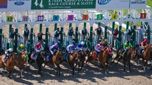 A Price Play to Defeat War of Will in Louisiana Derby