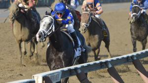 Eleven Things to Know About the Woodward Stakes