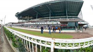 Betting for an Upset in the Los Alamitos Futurity