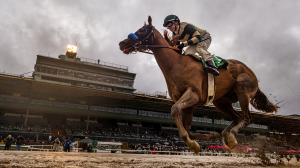 Runaway Victory for Mucho Gusto in Robert B. Lewis Stakes