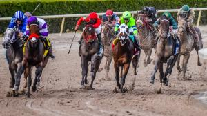 Using History to Handicap the 2020 Florida Derby