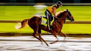 Live Longshots for the 2021 Kentucky Oaks and Kentucky Derby