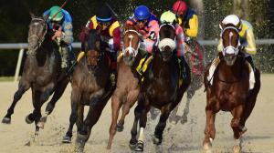 Derby Trail: Three Heating Up, Three Cooling Down for Feb. 21
