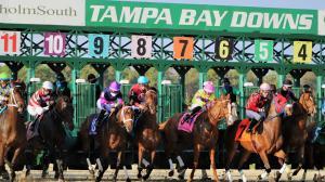 2021 Tampa Bay Derby Cheat Sheet