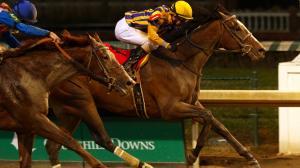Signalman Breaks Through in Kentucky Jockey Club Stakes