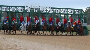 The 2019 Smarty Jones Stakes at a Glance