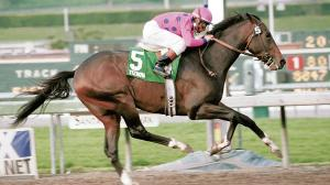 Tiznow's Heroic Breeders' Cup Classic Double