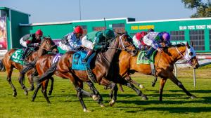 Best Bets: Trio of Fair Grounds Stakes Picks