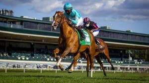 What to Know About Championship Saturday Races at the Breeders' Cup