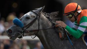Unique Bella Holds On Late to Win Clement Hirsch