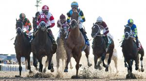 Using History to Handicap the 2020 Louisiana Derby