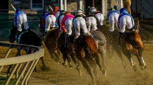 2021 Preakness Stakes at a Glance