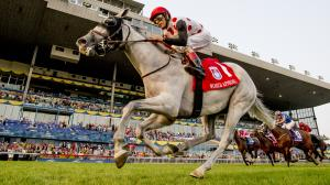 Fast Facts About the Ricoh Woodbine Mile
