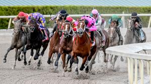 Kentucky Derby Date Secure: Maximum Security Dazzles in Florida Derby