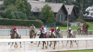 Dan's Double: Riding the Hot Hand at Oaklawn Park