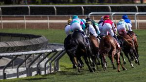 Leading U.S. Track Owners, Breeders' Cup Form Coalition on Safety