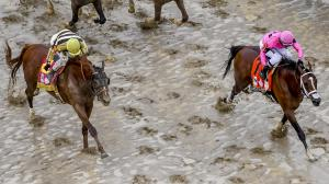 Country House (left) before winning the 2019 Kentucky Derby.