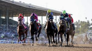 Biggest Breeders' Cup Upset for Every World Championships Race