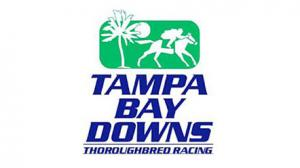 2018 Lambholm South Tampa Bay Derby