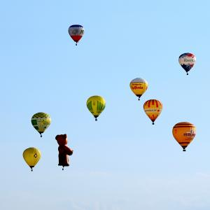 Hot Air Balloon Festival (Distance from Pimlico: 18 miles, 24 minutes)