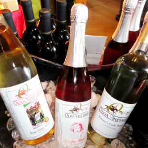 "<a href=""http://olivavineyards.com/"">Oliva Vineyards</a>"