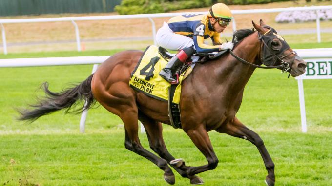 race horse betting calculator wheels
