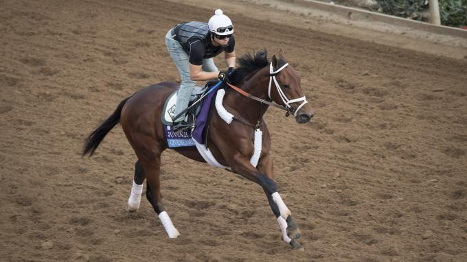 Givemeaminit Preakness